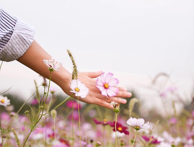 Красивые руки на фоне цветов