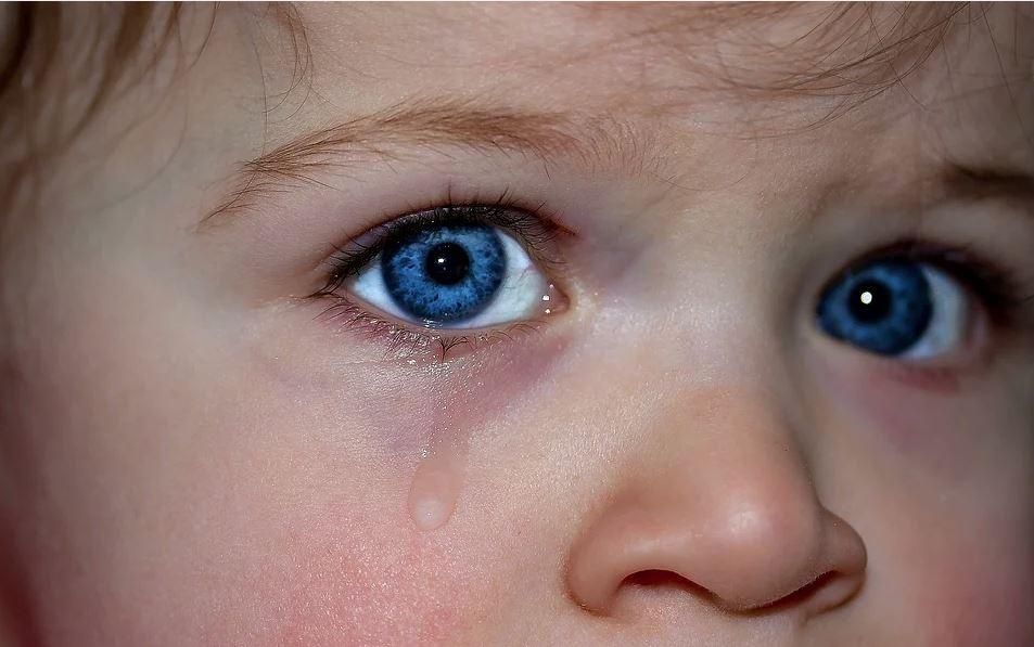 Ребенок не хочет в детсад